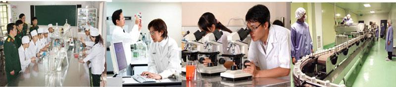Quá trình nghiên cứu và sản xuất kiện khớp Collagen Học viện Quân Y