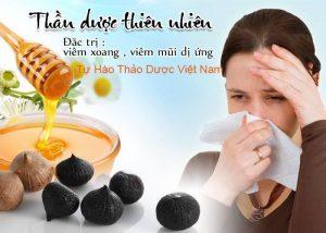 Chữa bệnh viêm xoang với bài thuốc từ Tỏi đen và mật ong