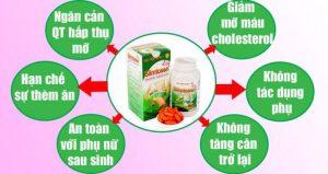 Cơ chế giảm cân của sản phẩm Slimtosen extra Học Viện Quân Y
