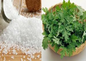 Công dụng đặc biệt của ngải cứu về giảm mỡ bụng