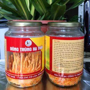 Đông trùng hạ thảo tươi được công ty TNHH tỏi đen Việt Nam nuôi cấy thành công