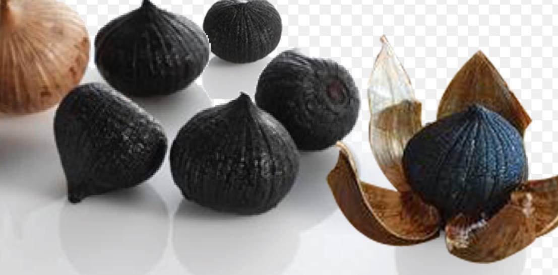 tỏi đen nguyên chất