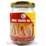 1 lọ đông trùng hạ thảo Việt Nam