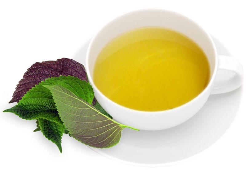Trị tàn nhang bằng lá tía tô với phương pháp uống trà