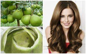 Cách làm tóc mọc nhanh bằng cách sử dụng tinh dầu bưởi