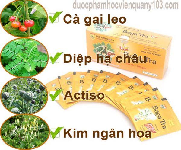 Các thành phần thảo dược chính trong trà mát gan bogatra Học Viện Quân Y