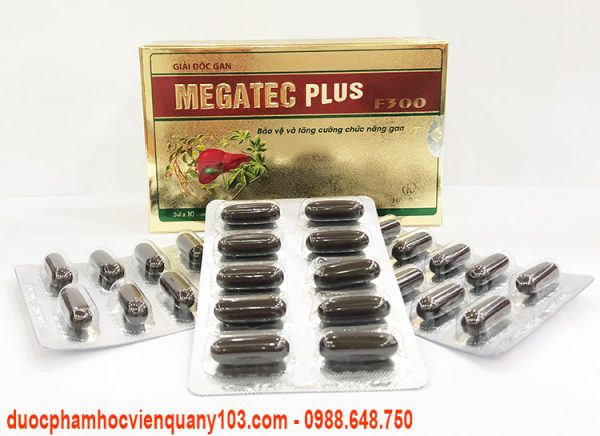Giai Doc Gan Megatec Plus F300 Hvqy 6