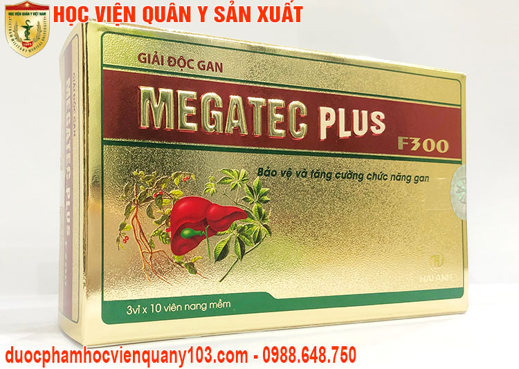 Giai Doc Gan Megatec Plus F300 Hvqy