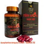 Manh Duong Nam Viet Hvqy 4