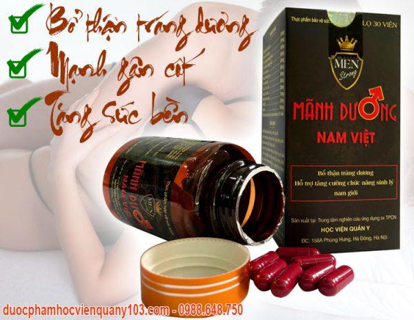 Manh Duong Nam Viet Hvqy Cong Dung